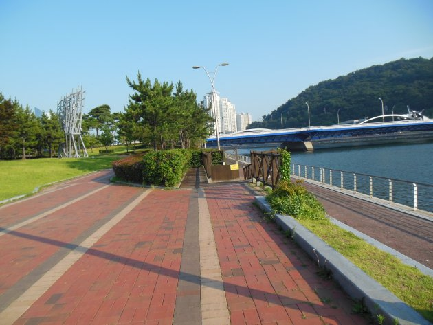 水営川沿いの散策路2(2016年6月撮影)